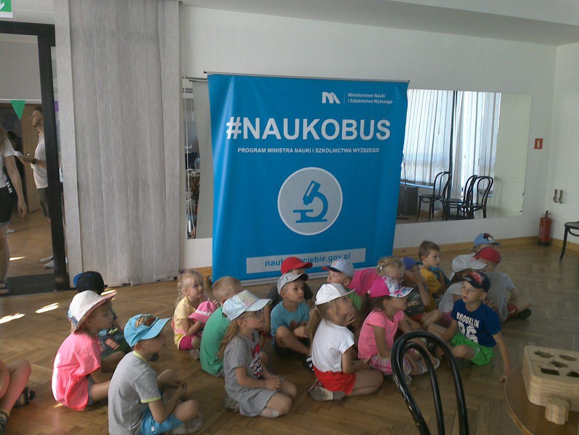 """""""KOTKI W NAUKOBUSIE"""""""